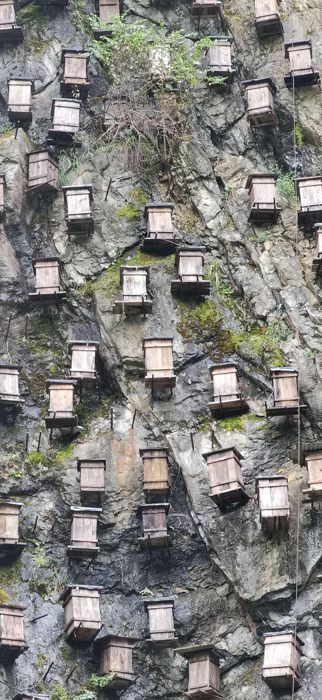官门山岩蜜1.jpg